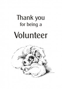 Thanks - volunteer