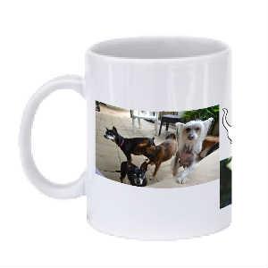 HWAH Mug 2