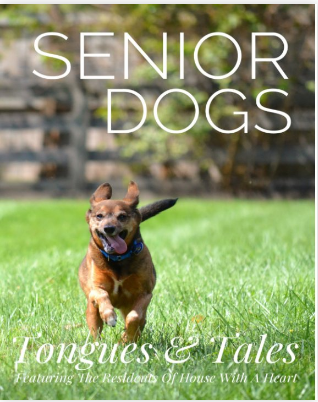 Senior Dogs: Tongues & Tales